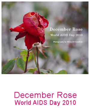 Dcecember Rose: World AIDS Day 2010